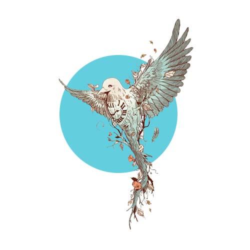 Птицы, перья