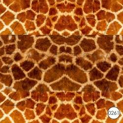 0261 Жираф