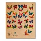 006 Разноцветные бабочки