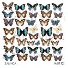 0142 Бабочки