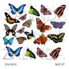 0147 Бабочки крупные