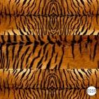 0259 Тигриная шкура