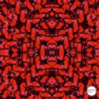 0271 Бабочки