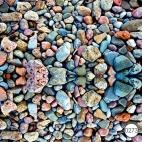 0273 Разноцветные камни