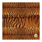 259 Тигр