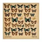 142 Бабочки