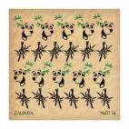 116 Панды и бамбук