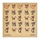 227 Аниме коты
