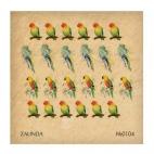 0104 Попугаи