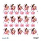 0237 Колибри и розовые цветы